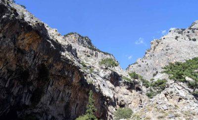 Rouvas Gorge – Mount Psiloritis