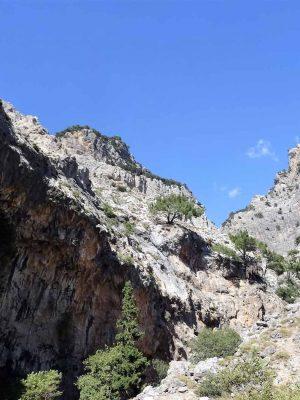 Rouvas, Hiking South Crete